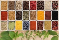 Herbs ang spices Royalty Free Stock Photography