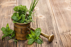 Herbs with antique mortar Royalty Free Stock Photo