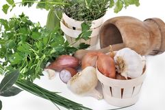 Herbs and aromatics Stock Images