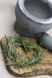 Herbs as heart. Stilllive with mortar and herbs Royalty Free Stock Images