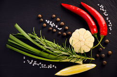 Herbs background - chili pepper, rosemary, garlic, green onions, lemon, peppercorn and salt. Stock Photos