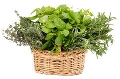Herbs in Basket Stock Photos