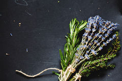 Herbs bounds on a dark grey board Royalty Free Stock Photography