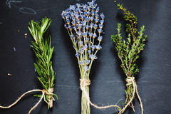 Herbs bounds on a dark grey board Stock Photo