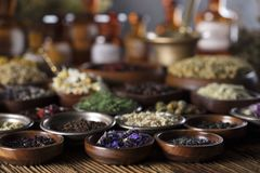 Natural and alternative medicine.  Place for logo and text. Herbs in bowls, mortar and medicine bottles on wooden rustic table Royalty Free Stock Photography