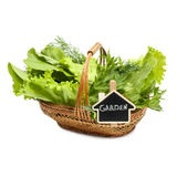 Herbs in a braided wooden basket on white background with the in. Scription garden Stock Photo