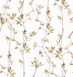 Herbs branch floral on white bacground pattern stock photo