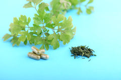 HERBS AND CAPSULES. Close up with mortar and pestle stock images
