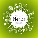 Herbs card design. Happy Spring or Summer green background and text in square floral frame, vector illustration Stock Photo