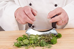 Herbs are chopped with a herb cutter Royalty Free Stock Photography