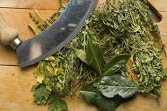 Herbs on a chopping board royalty free stock photography