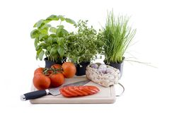 Herbs with chopping board of tomato and garlic Royalty Free Stock Photo