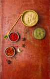 Herbs for cooked with herbs on the red old wooden. Stock Image