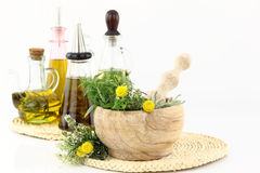 Herbs and cooking oil Stock Image