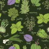 Herbs on the dark background pattern Stock Photography