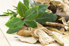 Herbs and dried mushrooms Stock Photo