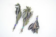 Herbs Dried Sage Bunches Stock Photography