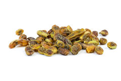 Herbs: dried sophora japonica  beans. Herbs: dried sophora  japonica beans on the white background Royalty Free Stock Photos