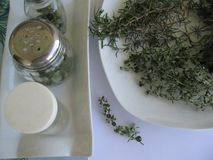 Herbs drying. Outside, and near ready to be bottled Stock Images