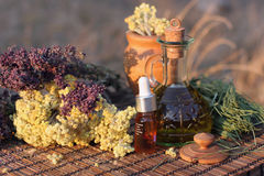 Herbs and essential oil royalty free stock photos