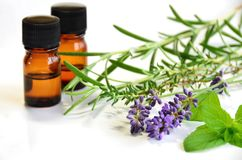 Herbs and essential oils Royalty Free Stock Photo