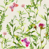 Herbs, flowers, butterflies, meadow grass. Repeated floral pattern. Watercolour. Herbs, flowers, butterflies, meadow grass. Vintage repeated floral pattern Retro Royalty Free Stock Image