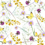 Herbs and flowers with butterfly background. watercolor illustration Royalty Free Stock Photography