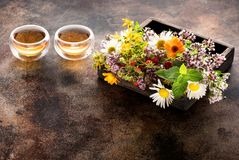 Herbs and flowers for herbal healing tea. In a wooden box and cups tea Royalty Free Stock Photo