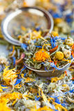 Herbs and flowers for herbal tea Royalty Free Stock Photos