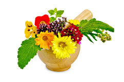 Herbs and flowers in a mortar Stock Photo
