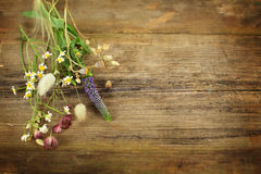 Herbs and flowers on old wooden table Royalty Free Stock Images