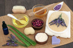 Herbs and Flowers for Skincare. Herbal skincare ingredients to soothe skin disorders with lavender flowers, aloe vera and rose petals on bamboo over oak wood Stock Photography