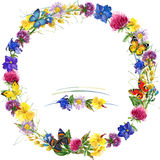 Herbs and flowers wreath with butterfly background. watercolor illustration Stock Photography