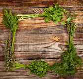 Herbs frame. Frame made out of herbs on a wooden board with copyspace stock photography