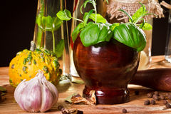 Herbs and fresh spices royalty free stock photos