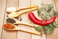 Herbs and fresh vegetables Stock Images