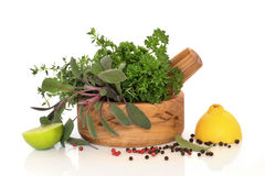 Herbs, Fruit and Spices Stock Image
