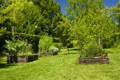 Herbs garden Royalty Free Stock Image