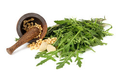 Herbs,garlic and nuts in mortar Stock Photos