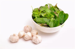 Herbs and garlic Stock Images