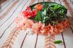 Herbs. hair oil. ayurvedic stock photography