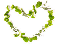 Herbs heart Royalty Free Stock Images