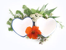 Herbs and hearts stock photography