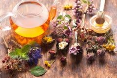 Herbs and herbal tea Stock Photo