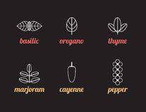 Herbs icons. Icons for cooking and shopping Royalty Free Stock Photography
