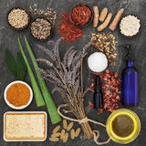 Herbs and Ingredients for Skin Disorders Royalty Free Stock Photos