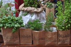 Herbs with italian names. Meaning basil, lavender, parsley, rosemary, oregan Stock Photo