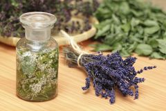 Herbs lavender, yarrow, wild-thyme, mint Royalty Free Stock Image
