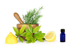 Herbs and Lemons Royalty Free Stock Photos
