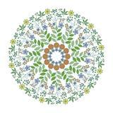 Herbs mandala Stock Image